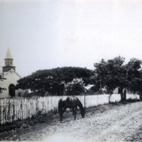 Horse in dirt road, fence and building in background
