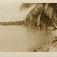 [0079 - Arno Atoll, Marshall Islands]