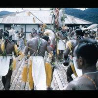 [Kaya Pulau, Jayapura, West Papua (Indonesia)?] [449]
