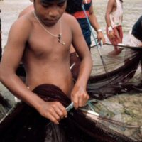 Boy Taking Fish Out of Net