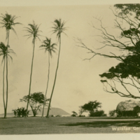 [038] Waialae Golf Course