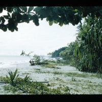 [Jayapura, West Papua (Indonesia)?] [368]