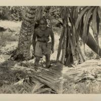 [0207 - Arno Atoll, Marshall Islands]
