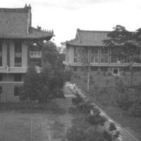 045. Luk Yau Tang, Lingnan