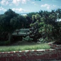 Circular garden plot outside Capt. Holt's (2). Saipan.…