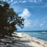Beach on Satawal - 06