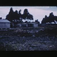 Jabwor Island, Jaluit Atoll.