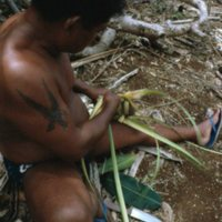 Man Weaving Palm Leaves - 13