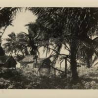 [0045 - Arno Atoll, Marshall Islands]