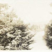 Kaizawa 2-106: Scenery shot in Yamagata 山形, Japan,…