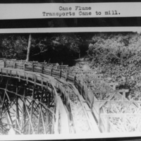 Cane Flume -Transports Cane to Mill