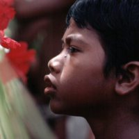 Boy Looking at a Flower
