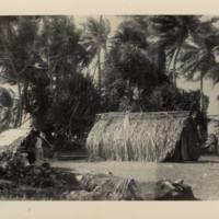 [0153 - Arno Atoll, Marshall Islands]