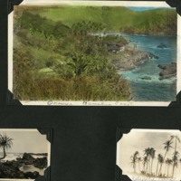 Page 40: House at Onomea Bay & Palm Trees
