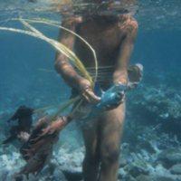 Man Fishing in Reef