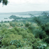 View from Harper's Lagoon opp. [Wahl's]. Koror, Palau.…