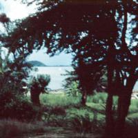 Lagoon. Ponape. June 1950