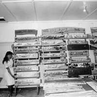 Palauan Products Center, 1966: 2. (N-11/11A).