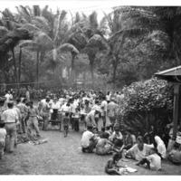 Hawaii War Records Depository HWRD 1351