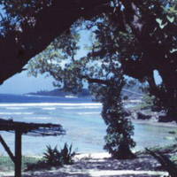 Beach at Angaur [Ngeaur, Palau]. Mar. 1951