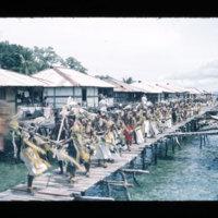 [Kaya Pulau, Jayapura, West Papua (Indonesia)?] [453]