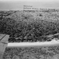 Aerial shot of Bikini vegetation. (N-2913.13).
