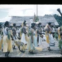 [Kayupulau, Jayapura, Papua (Indonesia)?] [402]
