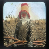 Japanese worker with sugar cane (Maui)