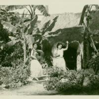 [040] Hula Dancers