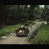 Ujae man pushing two-wheeled copra cart along the Ujae…