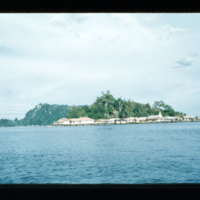 [Kayupulau, Jayapura, Papua (Indonesia)?] [395]
