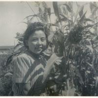 Kaizawa 2-090: Japanese woman standing with tall plant,…