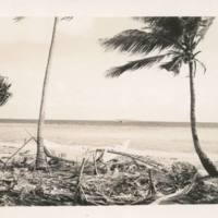 [0361 - Rongelap Atoll, Marshall Islands]