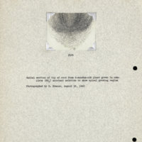 Physiology-Soils PM Negative 106