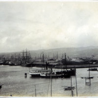 Harbor with many sailboats