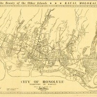 City of Honolulu, Territory of Hawaii