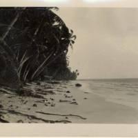 [0149 - Arno Atoll, Marshall Islands]