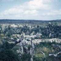 Devastated village in South Okinawa