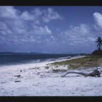 Japtan (David) Island. From road near pier, lagoon…