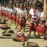 Harvest Festival, Tadian, Mountain Province 2