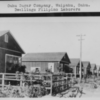 Oahu Sugar Company - Dwellings Filipino Laborers