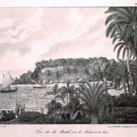 Vue des Iles Radak avec les Palmiers de Cocos