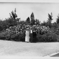 3 People Standing In Front Of Flowers and Hedge