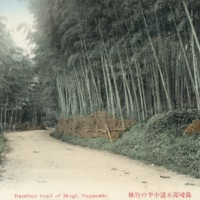 Bamboo road of Mogi, Nagasaki