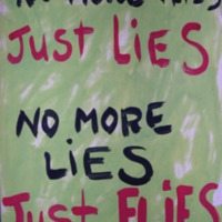 No More Flies Just Lies No More Lies Just Flies
