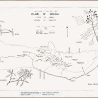 Forest road & trail map, 1967 : island of Molokai