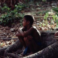 Boy Sitting in Roots of Tree