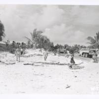 [0382 - Rongelap Atoll, Marshall Islands]