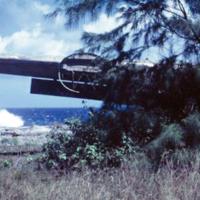Wrecked B-24, Angaur [Ngeaur, Palau]. Mar. 1951