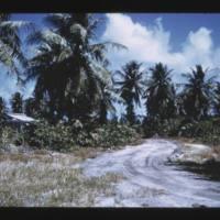 Japtan (David) Island. Same stand as previous slide to…